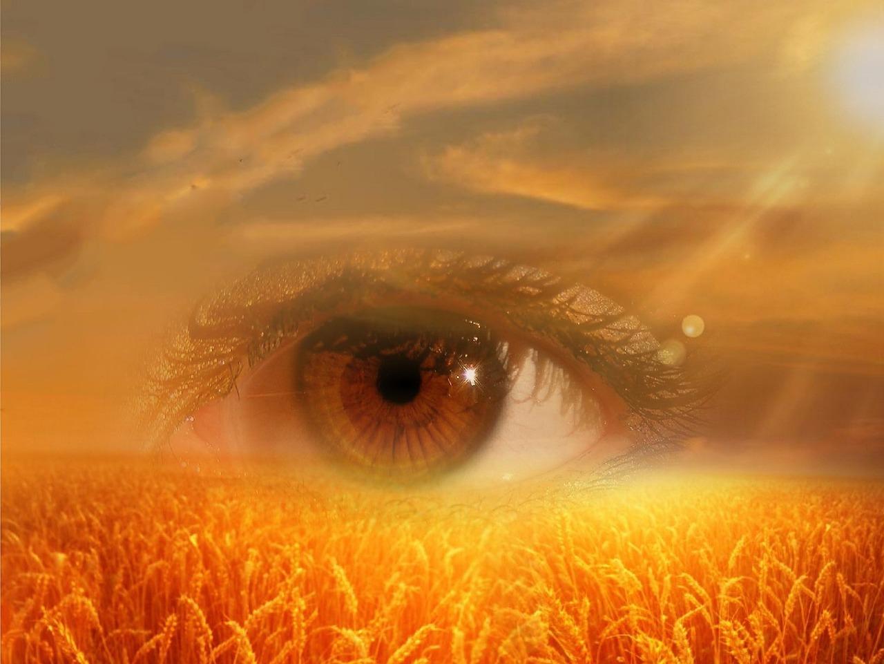eye-718523_1280