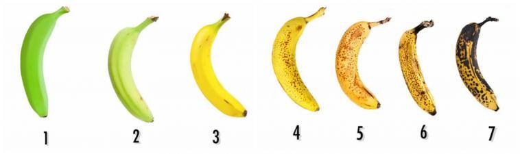a banán érési folyamata